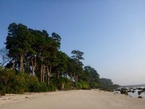 1P1010429_beach1
