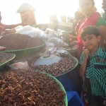 Incredible India – Reisen auf die gute Art