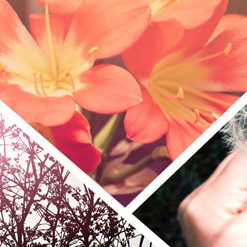 Bild via unsplash.com
