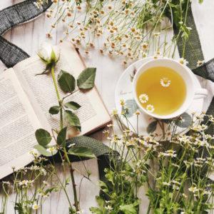 Ayurveda Tees und ihre Wirkung erklärt
